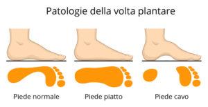 anatomia del ppiede