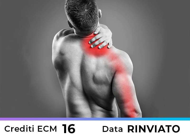 Terapia Manuale delle Nevralgie Cervico Brachiali – Roma