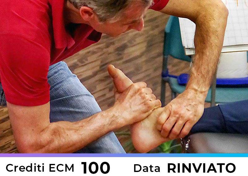Terapia Manuale secondo il concetto OMT Kaltenborn-Evjenth Livello I – Roma