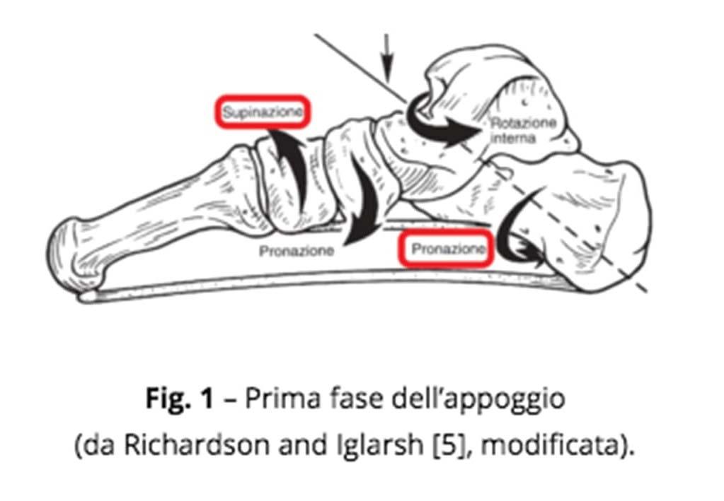 patologia funzionale piede