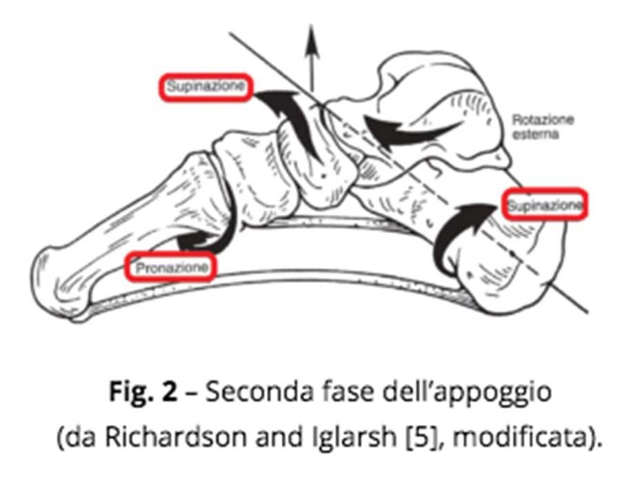 patologia piede