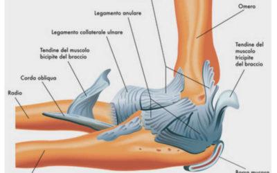 Epicondilite: Eziopatogenesi e Trattamento