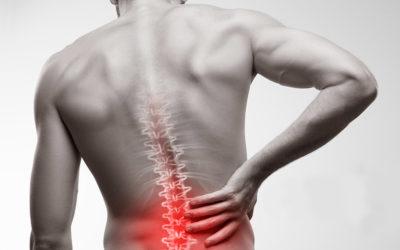 Mal di schiena e disordini muscolari del pavimento pelvico