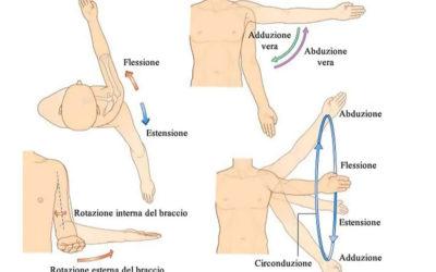 Meccanica articolare dell'articolazione della Spalla