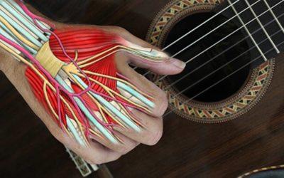 La Medicina Osteopatica applicata ai musicisti