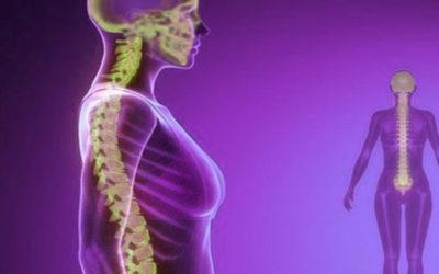 Osteopatia e Craniosacrale – D.O Giuseppe Totaro