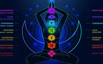 Chakra e Anatomia dei Plessi Nervosi