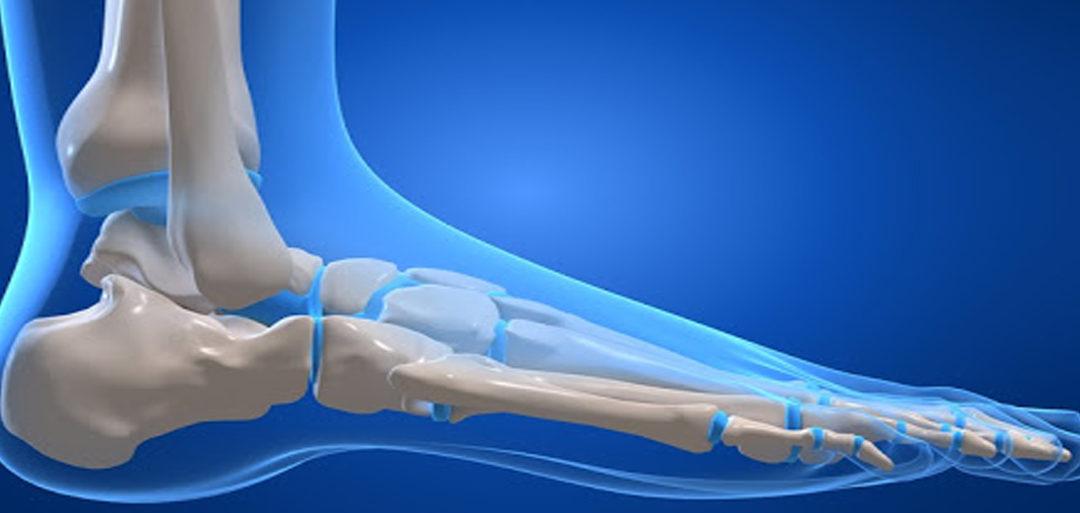 la meccanica del piede