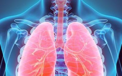 Alterazione del cuore e del polmone
