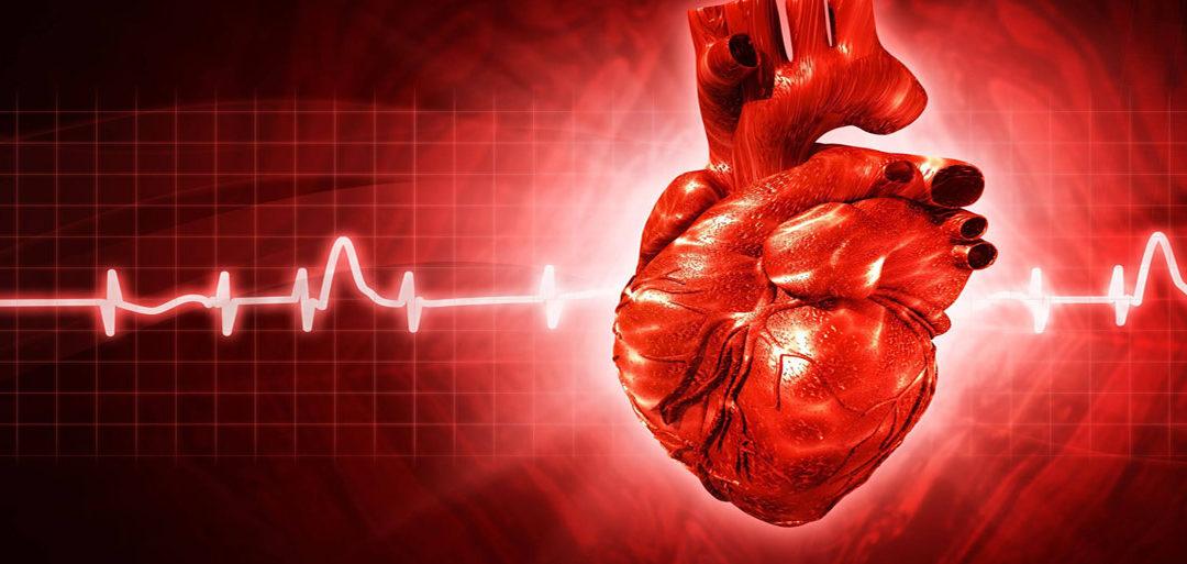 Aritmie cardiache stomaco e osteopatia