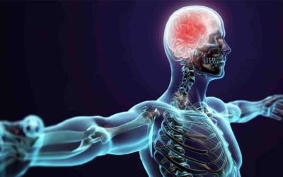 La manipolazione del SNC e trattamento osteopatico