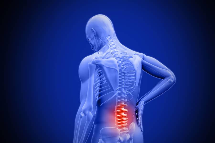Low Back Pain – la guida completa